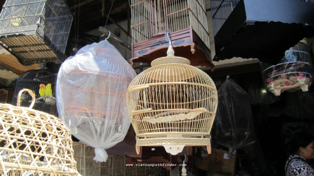 chợ chim Bali