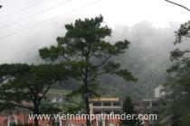 Khung cảnh sương mù tại Tam Đảo