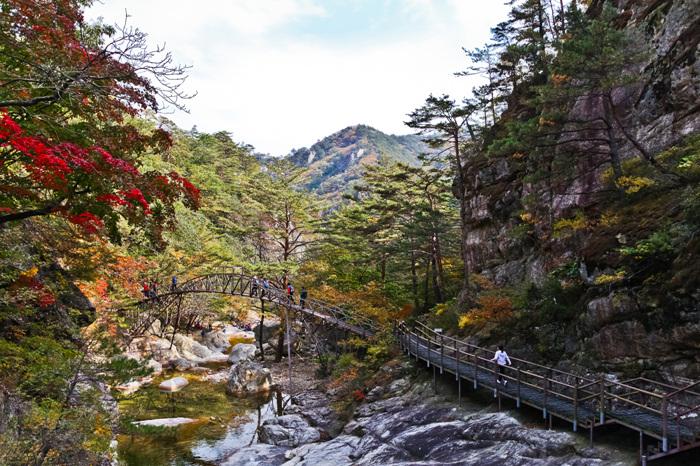 Vườn quốc gia Odaesan