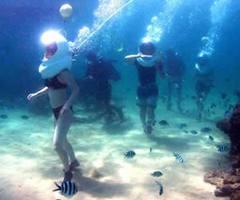 lặn biển tại bali indonesia