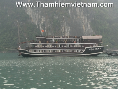 tau ngu dem ha long