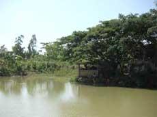 Khám phá đảo Ó - Đồng Trường