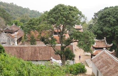 Hội chùa Thanh Mai