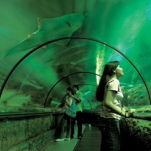 Sea World - Indonesia