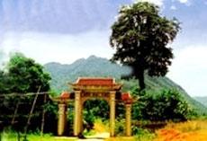 Khu chùa tháp Hắc Y