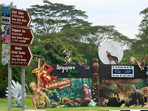 Vườn thú quốc gia Singapore (Singapore Zoo)