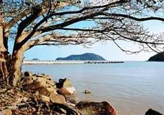 Đảo Hòn Khoai