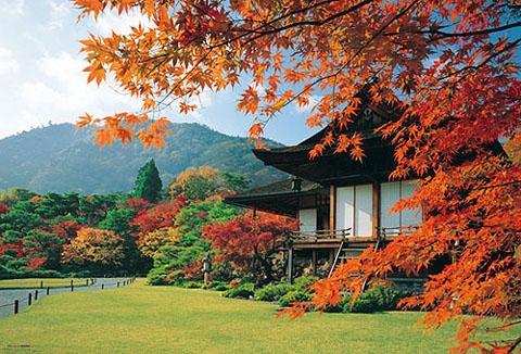 Du lịch Nhật Bản ghép khách: HÀ NỘI – NARITA – HAKONE – MT. FUJI – YOKOHAMA – TOKYO – HÀ NỘI 5 ngày
